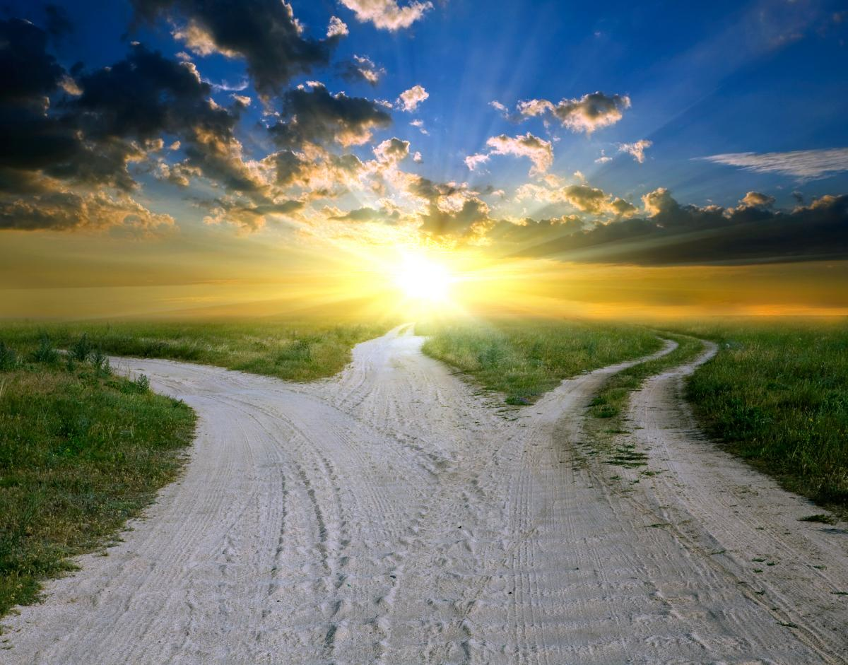 Three rural dirt roads diverge